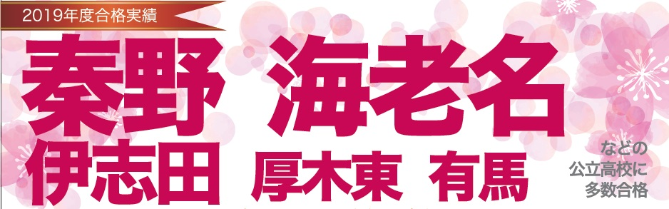 2019年度 高校入試合格実績 渋沢スクール
