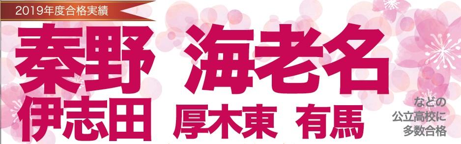2019年度 高校入試 合格実績 渋沢スクール